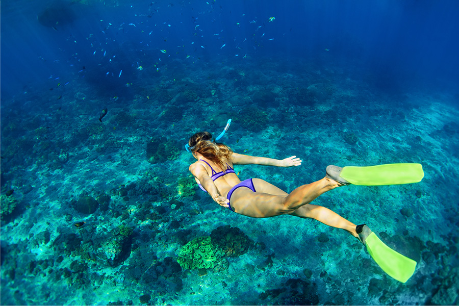 Snorkeling in Jungle Beach, Weligama, The Surfer - The best surfing and yoga retreat in Sri Lanka and South Asia.