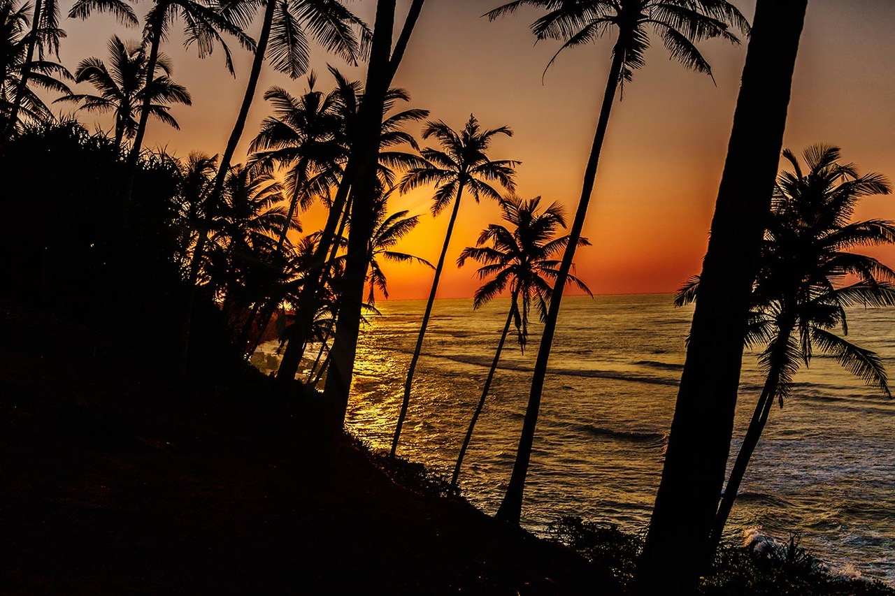 Top Things to Do in Weligama, Sri Lanka,