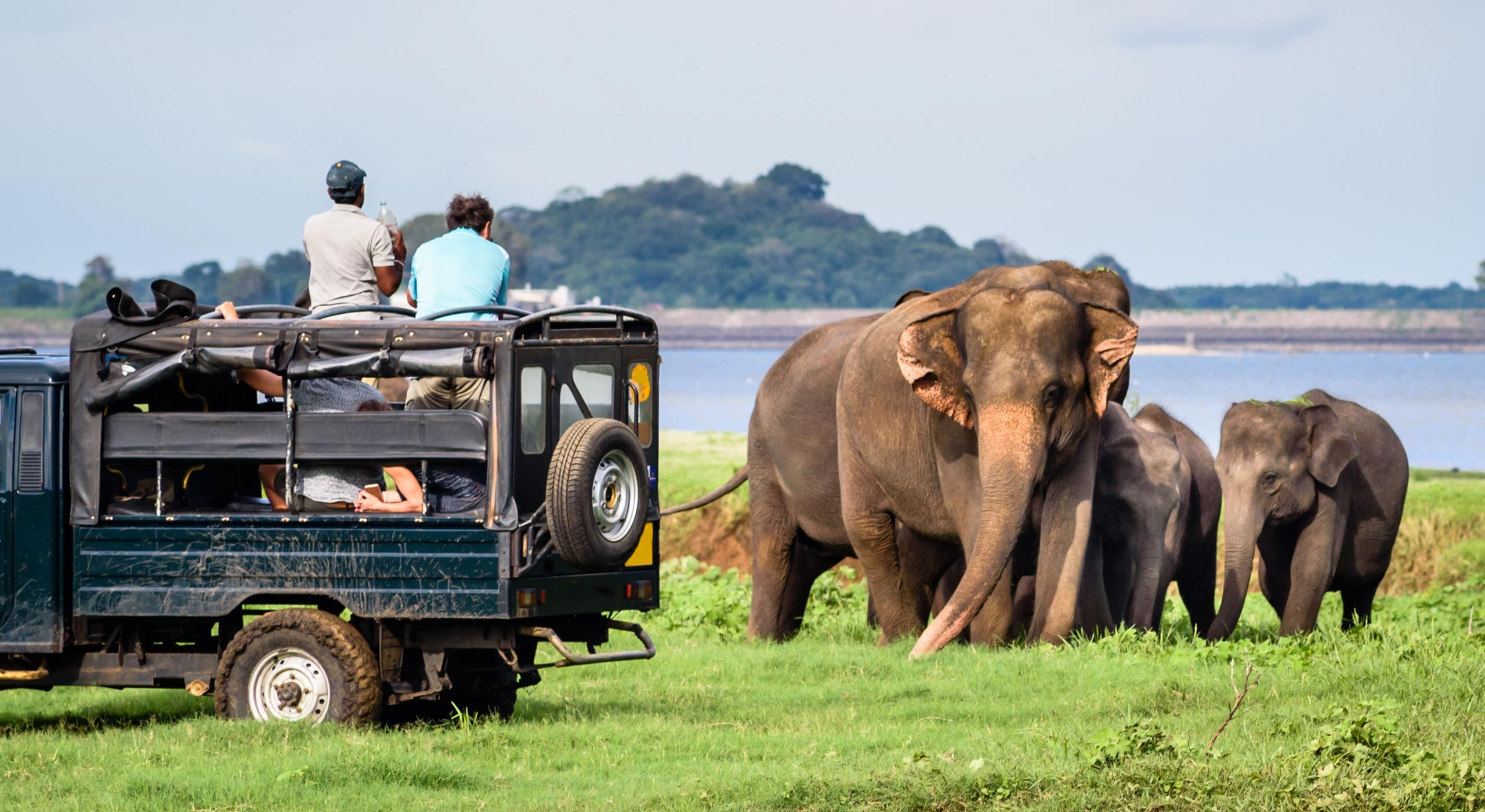 Yala National Park, The Surfer - The best surfing and yoga retreat in Sri Lanka and South Asia.