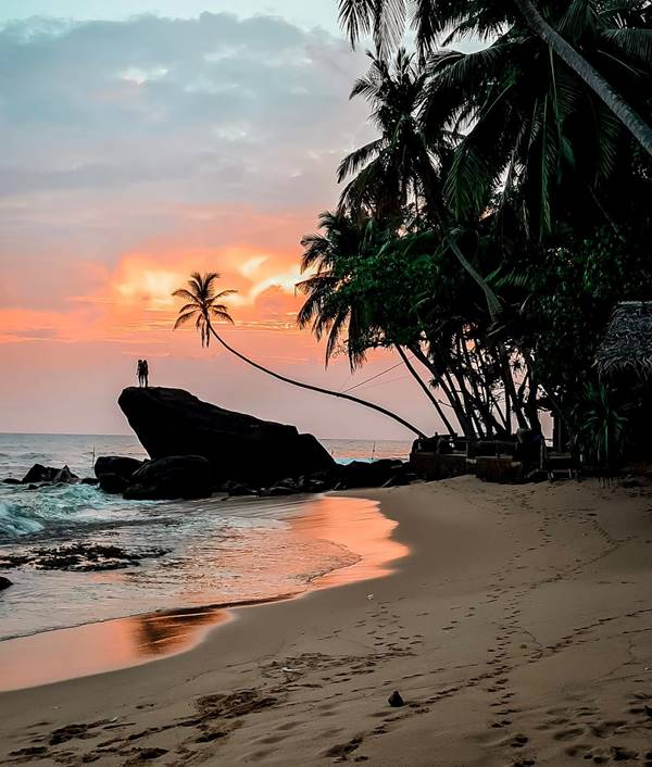 1. Wijaya Beach, The Surfer - The best surfing and yoga retreat in Sri Lanka and South Asia.