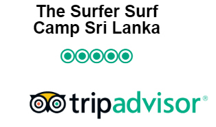 The Surfer On Trip Advisor Reviews